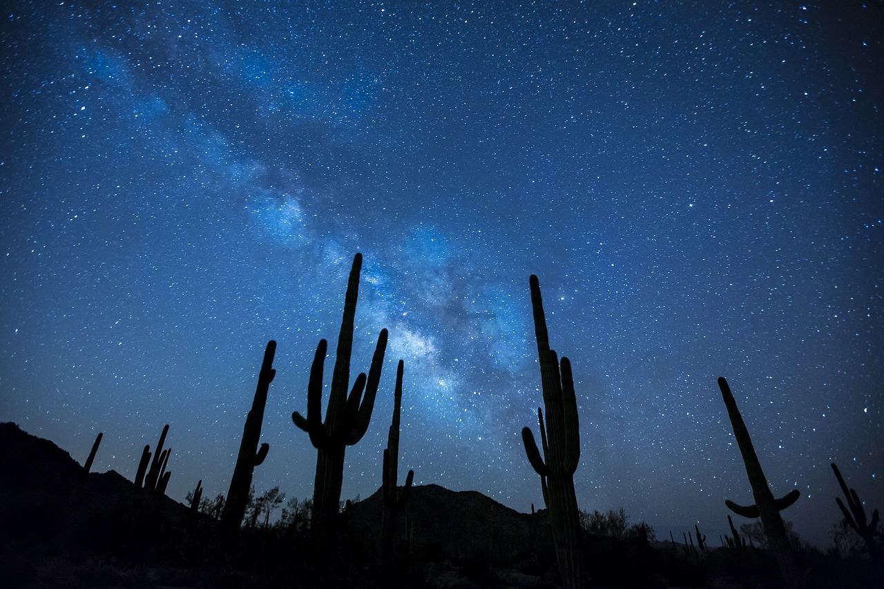 Sky and milky way seen from the desert