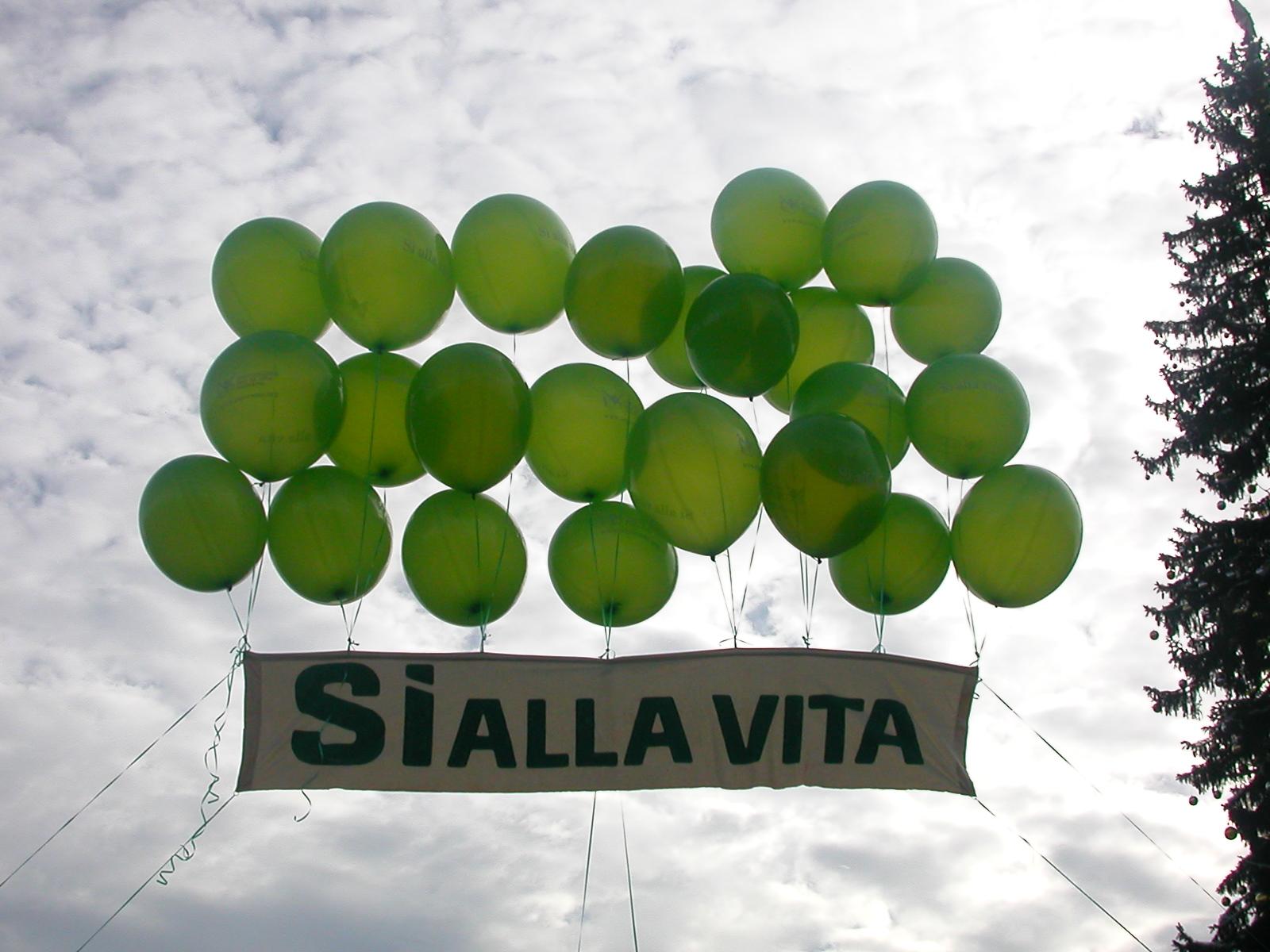 Movimento per la Vita italiano