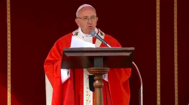 Papa Domenica delle Palme